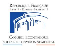 220px-Conseil_économique,_social_et_environnemental_-_logo